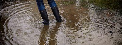 flood insurance Alpharetta GA